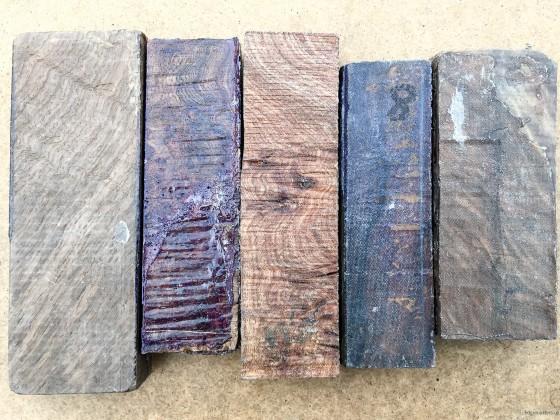 Walnut, elm, eucalyptus